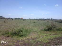 Three acres of land at Juja Farm for Sale at very cheap price