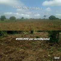 Farm Land for sale in ogun state