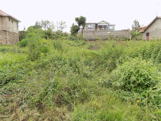 Thika Ngoingwa 50x100 plot for sale Thika - image 2