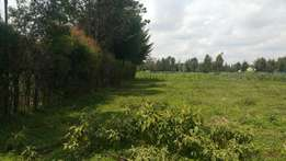 1/2 acre at outspan with title eldoret-nairobi highway