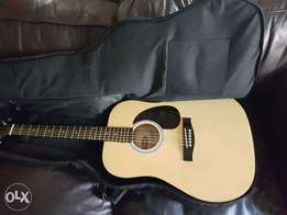 Stagg guitar .