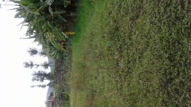 A 1/2 acre land for leasing at kariminu lanet Nakuru East - image 1