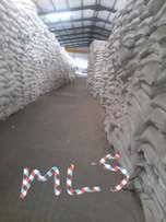 Sugar beans for Africa import export of sugar beans