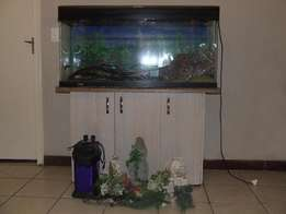 1230M Fish tank complete with cabinet and accessories