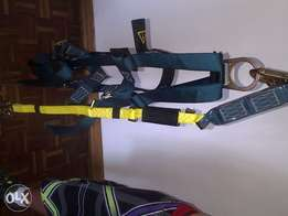 Fully body harness (Gemtor)
