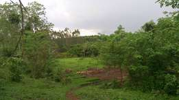 2 acres for sale in Gayaza at 25m each