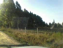 5 acres in Nyandarua