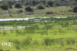 Farm for sale in Laikipia 600 acres