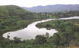 Land sale neighboring lake Saaka and Mountains of the moon university