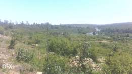 Yuko Kitengela plots on sale best valentine offer at only 950k