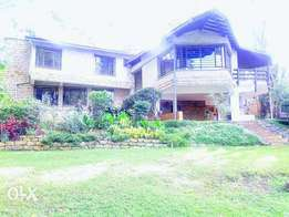 Leafy kitisuru super house to let