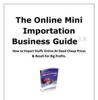 The Mini Importation Guide