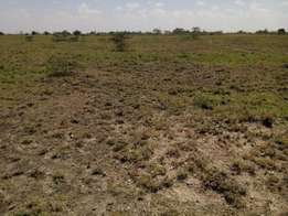 Kitengela 50x100 Prime Land in Very Developed Area