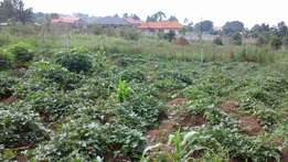 50x100 plots for sale.