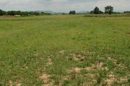 For Sale!!! A Spectacular Hill Top Land at Apo Resettlement