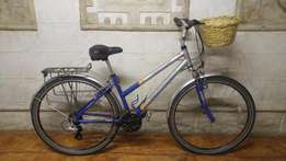 Imported Aluminium Pythin Paragon 8200 Cruiser Bicycle - R1750