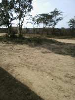 50 by 60 And 50 by 120 plots for sale!!
