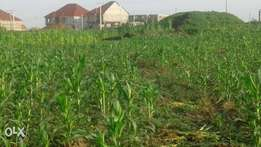 Sales of land at airport road behind river park 800m2 of Land