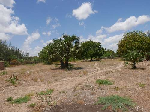 Land for Sale in Malindi. Malindi - image 4