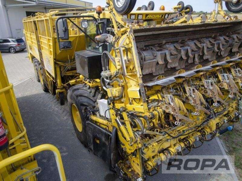 Ropa Euro-tiger V8-4b - 2012 - image 7