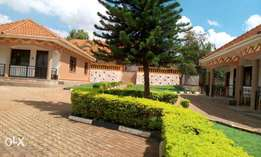 5 bungalows for sale at Seguku Entebbe
