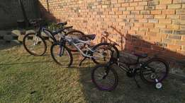 Diamond back mountain bikes,