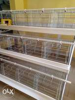 Automatic Battery cage