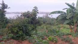 One acre in Entebbe-road bugiri touching lake at 140m