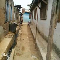 9rooms bungalow on half plot for sell in mushin 9million