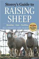 Sheep- Book Raising Sheep
