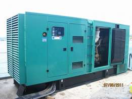 Best Generator and Plant Experts