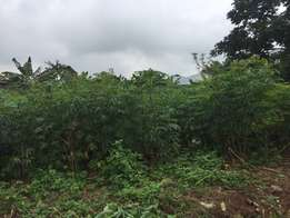 A Plot of Land at ODA ROAD, AKURE