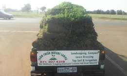 Farm Fresh lawns supply direct from our own Farm Lm & Kikuyu grass.