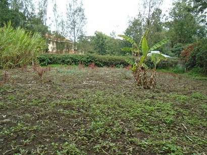 0.4 acre vacant land for sale touching tarmac in karen Karen - image 2