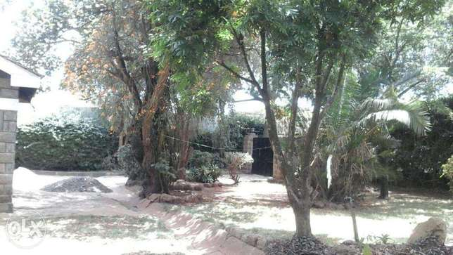 Beautiful Bungalow in Ngomg Town with Garden & Carport for 2 cars Ngong Township - image 2