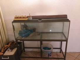 Fishtank Classified Ads In Pet Care Accessories Olx South Africa