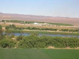 Vioolsdrift Property - Irrigation Scheme farms with waterrights