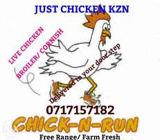 Live chicken on wheels, delivery to all areas