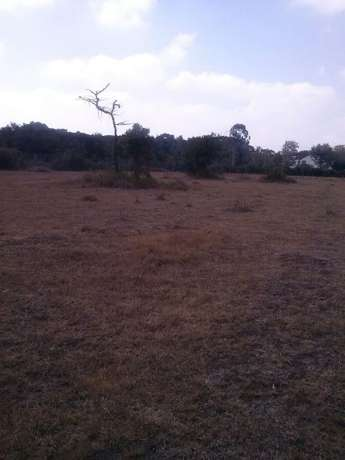 Very prime Half Acre Parcel of Land near Bomas of Kenya Hurlingham - image 3