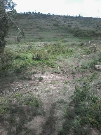 3 and 1/4 acres at Juja farm Mumba area. With a clean Freehold title. Kalimoni - image 6
