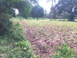 majengo/mwatundo quater acre plot for sale