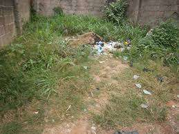 This land is Located at Festac Town (21 Road) Size is 1,800Sqm