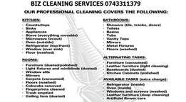 Professional carpet and upholstery deep cleaning