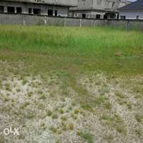 Over 120 plots of Dry land for sale behind Amen Estate Eleko.