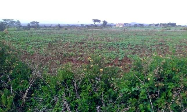Land for sale in Bahati (6 acres ) Nakuru East - image 7