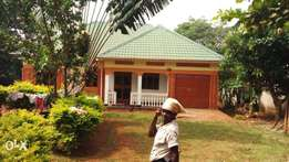 house on sale sitting on 140x75 plot entebbe Nalugala