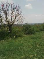 9 acres in bukerere at 130m each