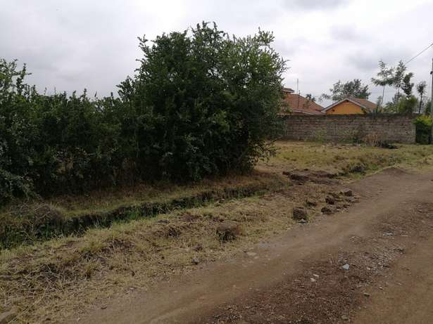 1/4 Acre Landless Estate, Thika. Thika - image 2