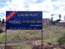 1 Acre Superhighway On Sale