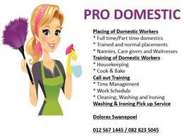 Pro Domestic Placement Agency